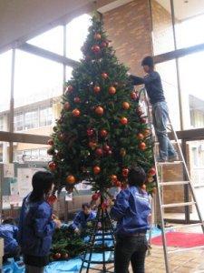 大学の校内にも大きなクリスマスツリーが。