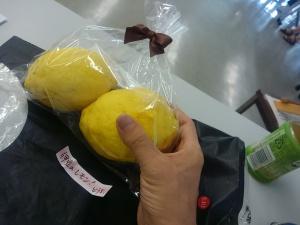 0702伊豆のおばけレモン