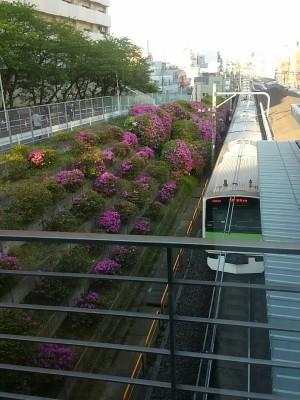 0428駒込駅